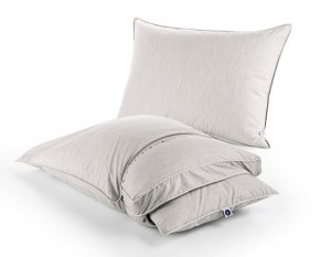 Sleep Number Pillow